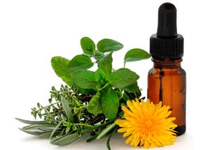 aromaterapia y sus aplicaciones