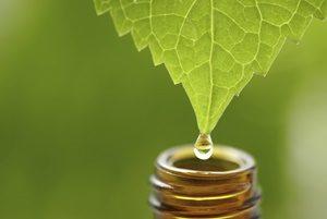 homeopatía beneficios