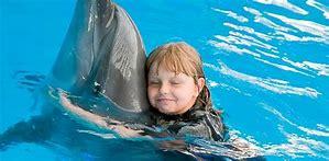 zooterapia con delfines