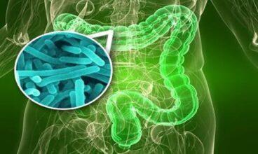 Desparasitación Herbal según la Doctora Clark